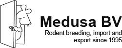 logo-medusa